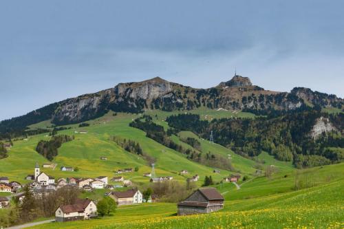 Bruelisau Dorf Fruehling